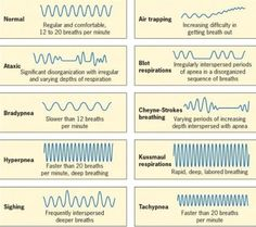 patterns of respiration