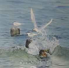 """""""Brandseeschwalben"""" Sandwich Terns"""" 90 x 90 cm Silkpainting www. Wildlife Art, Painting, Animals, Silk Painting, Nature, Animales, Kunst, Animaux, Painting Art"""