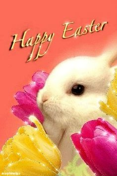 Happy Easter Bunny and Sparkling Tulips