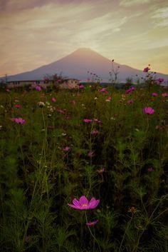 Autumn in Japan | Mt. Fuji from Oshino-mura