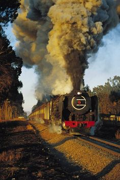 Smoke & Steam ~ Classic Look ~ South African railways ~ BFD Electric Locomotive, Steam Locomotive, South African Railways, Train Times, Train Art, Old Trains, Train Engines, Steam Engine, Train Tracks