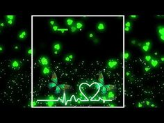 Green Screen Video Backgrounds, Love Wallpaper Backgrounds, Green Background Video, Desktop Background Pictures, Ipad Background, Banner Background Images, Studio Background Images, Background Images For Editing, Backgrounds Free