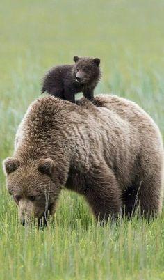 wow, mom, I'm really big!!