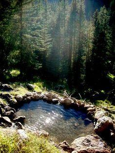Old Moss Woman's Secret Garden Hot spring in Calistoga, California