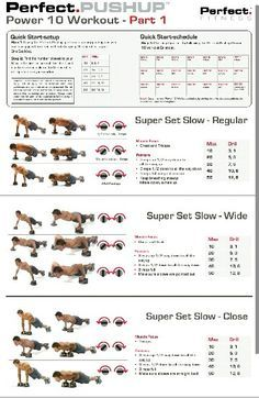 perfect pushup workout chart pdf