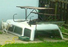 http://laughshop.com/redneck-dog-house-picture/