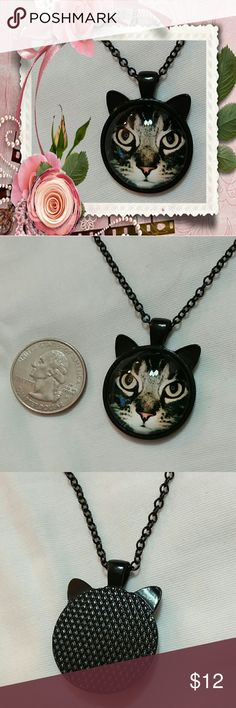 """Black cat cabochon necklace Black cat cabochon necklace.  20"""" black chain with 2"""" extender.  New Jewelry Necklaces"""