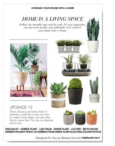 """Upgrade your House into a Home #2"" by bar-gou ❤ liked on Polyvore featuring interior, interiors, interior design, home, home decor, interior decorating, Shop Succulents, Nude and Torre & Tagus"