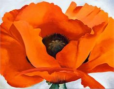 Red Poppy  ~Georgia O'Keeffe    from where i sit it's more flame orange than red, but hey--far be it from me to second guess O'Keefe!