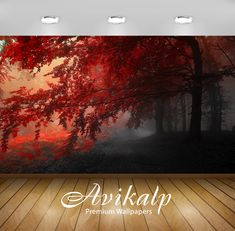 Avikalp Exclusive Autumn Beauty HD Wallpapers for Living room Hall Kids Room Kitchen TV 3d Wallpaper Shiva, 3d Wallpaper Buddha, 3d Wallpaper Butterfly, 3d Wallpaper Grey, 3d Wallpaper Ceiling, 3d Wallpaper Painting, 3d Wallpaper Stickers, 3d Wallpaper Design For Bedroom, 3d Wallpaper For Bedroom