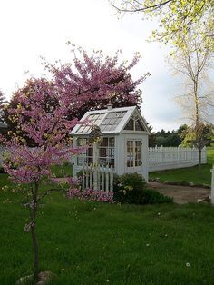 painted & trimmed greenhouse/garden shed created from old windows by Calico Apron, (or a studio) shed design shed diy shed ideas shed organization shed plans Best Greenhouse, Backyard Greenhouse, Greenhouse Ideas, Portable Greenhouse, Greenhouse Interiors, Shed Design, Garden Design, Cold Frame, Garden Structures