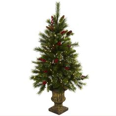 Ring in the holiday season with this handsome Christmas tree. This isnt any ordinary tree - it comes complete with berries pine cones and 100 white LED lights and if a light burns out the rest stay on. Urn dimensions are H x L x W.
