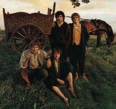 Frodo, Sam, Merry,  Pippin