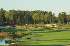 So many great golf courses in and around Ocean City! #ocmd