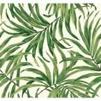 York Wallcoverings Ashford Tropics ft Green Paper Floral Prepasted Soak and Hang Wallpaper at Lowe's. Slim blades of color reach across this pattern creating a tangle of Tropical leaves, some in silhouette, with shafts of light peeking through dense Tropical Wallpaper, Botanical Wallpaper, Green Wallpaper, Wallpaper Roll, Leaves Wallpaper, Wallpaper Jungle, Wallpaper Decor, Bathroom Wallpaper Leaves, Wallpaper Backgrounds