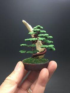Wire bonsai tree on wood by Ken To by KenToArt on DeviantArt Bonsai Wire, Bonsai Plants, Bonsai Garden, Bonsai Trees, Cactus Plants, Mini Bonsai, Indoor Bonsai, Plantas Bonsai, Diy Plante