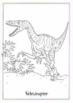 jurassic world coloring pages free printing 27 free printable dilophosaurus prehistoric. Black Bedroom Furniture Sets. Home Design Ideas