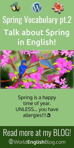 Spring Vocabulary - Talk about Spring in English! Vocabulary Words, English Vocabulary, Verb To Have, Spring Allergies, Watery Eyes, Pollen Allergies, Improve Your English, English Language Learning, Spring Sign