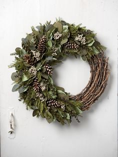 Frosted Forest Preserved Wreath