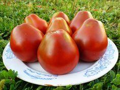 http://pomidom.ru/wp-content/uploads/2012/01/FILE0658-112.jpg