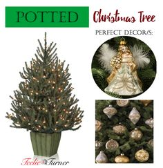 Potted Christmas Tree www.theteeliebog.com Potted trees are the easiest to set up and the easiest to move. They're better to be in the entryways of your homes to welcome your visitors. Decorations should have the gold or rustic features. #TeelieBlog