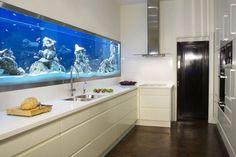 un aquarium avec un éclairage à LED bleu