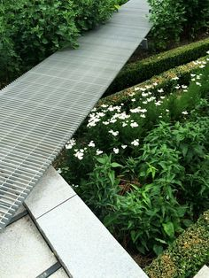 Captivating Gallery Of Novartis Physic Garden / Thorbjörn Andersson + Sweco Architects    14