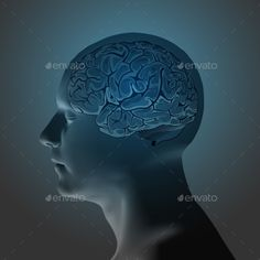 Abstract Human Head with a Brain