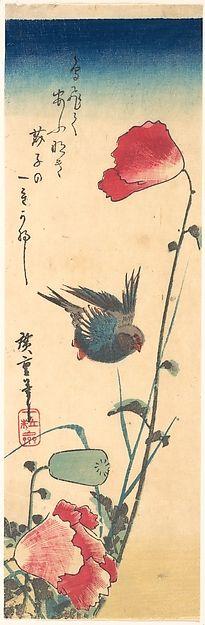 Utagawa Hiroshige   Bluebird and Flowering Poppies   Japan   Edo period (1615–1868)   The Met