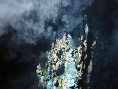 The summit of a deep-sea chimney. Volcanically heated fluid rises from the deep-sea 'smoker' at a newfound site this summer Ocean Deep, Deep Sea, Marine Love, Sea Floor, Natural Selection, Creature Comforts, Ocean Life, Pacific Ocean, Carnival