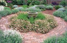Santa Barbara Daisy, Green and Gray Santolina, Autumn Sage (white flowering), Catmint (Nepeta) and English Lavender.