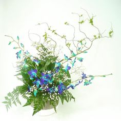awesome vancouver florist Blue orchids and Green philodendron for @colourbox_salon last week. Reminds me of a school of tropical fish. #fullbloomflowers #commercialdriveflorist #flowersoncommercialdrive #yvrflorist #eastvanflorist #flowerdelivery #weddingflowers #weddingflorist #eventflorist #eventflowers #vancouverflowers #lovewhoyoulove #deepdive #tabledecor #valentinesflowers #flora #fleurs #floret #flowerpower #flowerlove by @studiofullbloom  #vancouverflorist #vancouverflorist...