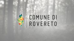 Kinè scs // Web, Graphic & more // New visual identity for Rovereto city - 2013 www.kine.coop