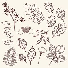Leaf Drawing Easy, Fall Leaves Drawing, Tree Line Drawing, Pumpkin Leaves, Autumn Leaves, Leaves Doodle, Draw Leaves, Fall Drawings, Fall Canvas