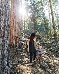 """""""Every few steps Ezra would stop, look up and say """"woooow... cooool."""" He was so in love with the tall pines... I was too. I want to live here. {he was mid…"""""""