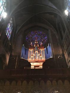 La arquitectura de esta catedral, que claramente fue concebida estéticamente dentro de su función simbólica, genera una experiencia mística cargada de un bagaje artístico y matérico. Las luces, las formas, cada parte de los vitrales y de las estructuras internas de esta catedral aportan elementos que hacen profundamente pictórica no sólo la imagen, sino la experiencia.
