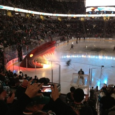 San Jose Sharks. All the sharks skate out of a big shark head at the beginning of the game! SO cool! (: