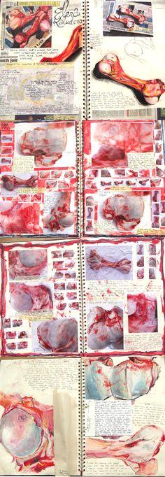 Development and sketchbook work- Bones- Lauren Nurse