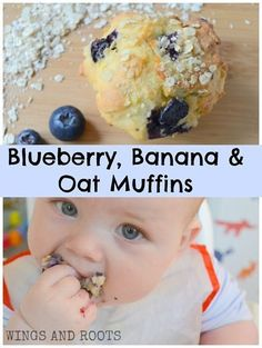 SUGAR FREE Blueberry Banana Oat Muffins - perfect for baby led weaning! :: From Wings and Roots snack desert Sugar Free Muffins, Banana Oat Muffins, Blueberry Muffins For Baby, Blueberries Muffins, Blueberry Recipes For Baby, Fingerfood Baby, Baby Food Recipes, Muffin Recipes, Baby Lead Weaning Recipes