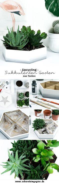 DIY Ombré Mini Sukkulenten Garten: Mit meiner Upcycling Idee zeige ich euch, wie ihr aus einer Teebox aus Holz eine tolle Deko basteln könnt! Schaut auf meinem Blog vorbei für noch mehr kreative Tutorials!