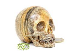 Landschaps Jaspis Schedel KS-RMIN-81-313 | Kristallen schedel | Webshop Danielle Forrer | Mineralen | Klankschalen | Koshi shanti's | Zaphir Chimes | Tingsha | Inzichtkaarten | Wierook StamFord | Pendels | etc | Wieringerwerf | Kristallen schedel |