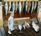 Destin Florida Fishing and Destin Charter Boat Service  www.blog.floridaholidays.co.uk  @florida @fishing @fishingFlorida