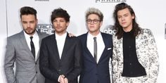 One Direction 2015 AMAs red carpet