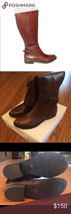 Aivaa Riding Boots Leather upper material Man-made lining Man-made sole 1 inch heel height 14 inch shaft circumference 16 inch shaft height Round closed toe tall boots Buckle hardware Functional inside zipper; decorative back zipper Steve Madden Shoes Winter & Rain Boots