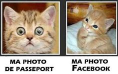 Photo passeport vs photo Facebook