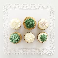 Succulent Cupcakes by Sinfully Sweet Cake Design Succulent Cupcakes, Tacos And Tequila, Web Design Studio, Muslin Bags, Wax Seal Stamp, Paper Source, Envelope Liners, Ink Pads