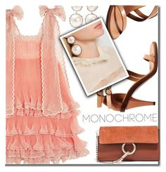 """""""Monochrome Pink"""" by shoaleh-nia ❤ liked on Polyvore featuring Chloé and Rosantica"""