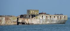 Concrete ships at Kiptopeke State Park listed among 14 Underrated Things in Virginia you Must Check Out.