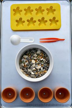 Seed Tray for Fine Motor and Sorting Activities (from Fantastic Fun & Learning)