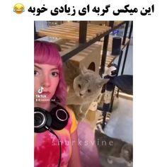 Funny Prank Videos, Funny Minion Videos, Cute Funny Baby Videos, Crazy Funny Videos, Funny Videos For Kids, Cute Couple Videos, Funny Cute Cats, Funny Vidos, Cute Funny Babies